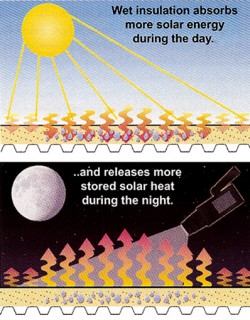 infrared roof scan illustration