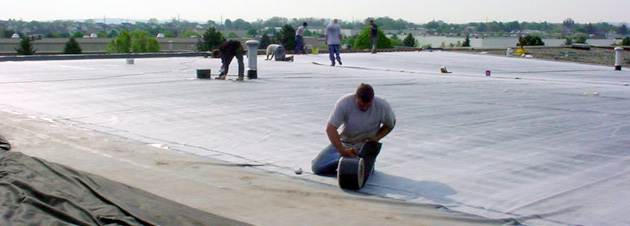 Understanding the Real Cost of a New Roof